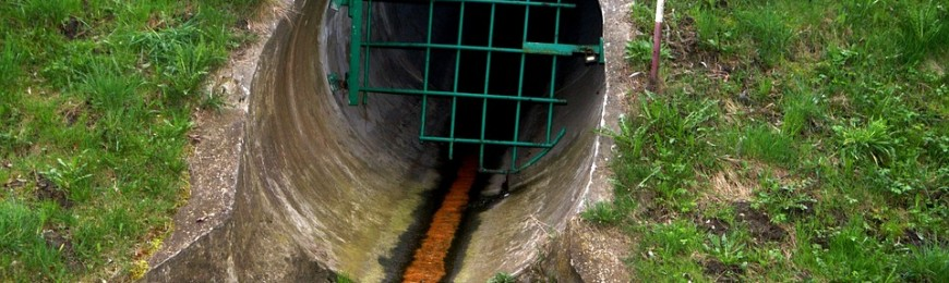 PFAS in Sewage Sludge and The Organic Standard